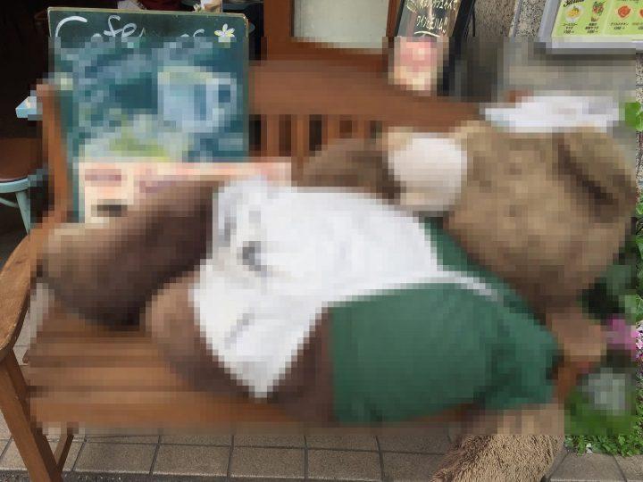 kumakichi2